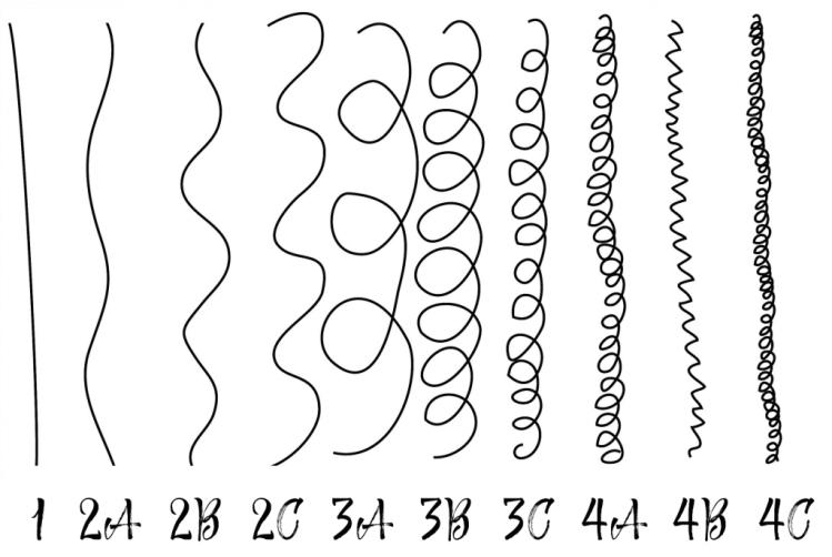 différentes textures de cheveux - illustration